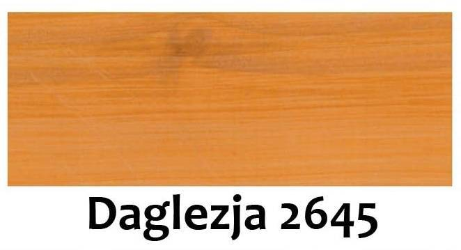 Remmers Pflege-ol olej do tarasu 100ml DAGLEZJA